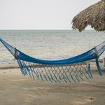 Beach Hammock at Cocotal