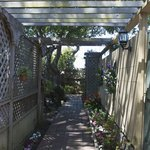 Our garden pathway to the patio suites