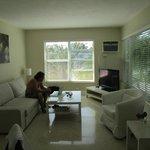 second window in living room,