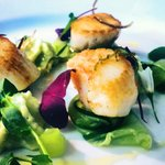 Scallops, lime, cucumer, avocado