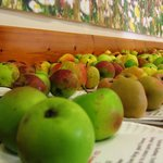 Over 200 apple varieties at Harestanes Apple Day event.