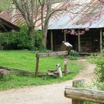 Charrit Creek Lodge