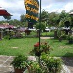 Tea & Coffee garden
