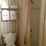 Pleasant bathroom - slightly confusing shower