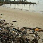 """""""garbage beach"""""""