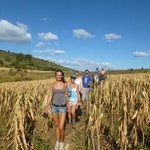 Trek through agricultural fields
