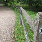 stretch in Great Falls Park- Virginia