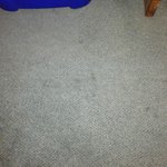 Filthy stained carpet