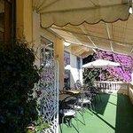 Terraceseating Purpleflowers