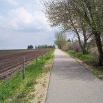 Wapsi trail