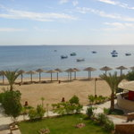 Foto de Dolphin Beach Hotel
