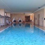 their nice pool!