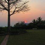 Sunset from the garden