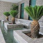ornamental pool (65945619)