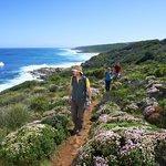 Cape To Cape walk track