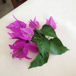masa üzerinde eksik olmayan çiçeğimiz