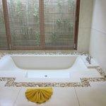 huge bathtub!