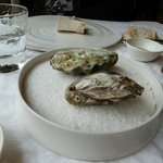 The gin and tonic oysters