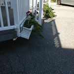 Falling flower box