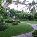 Grounds at resort.....beautiful!