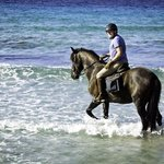 Ruta de Cami de Cavalls