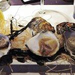 Proeverij van 3 Zeeuwse oesters: platte, creuse en caresse
