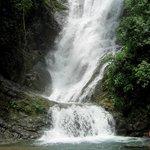 Bottom of Waterfall