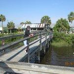 Fishing for pin fish