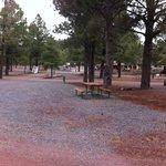 Circle Pines KOA Campground