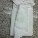 Shirt & Tie Towel Sculpture