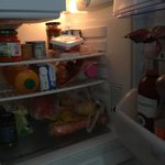 Apartment fridge