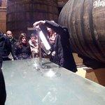 Clarificación del vino