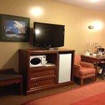 TV, Fridge, Microwave area