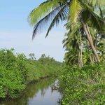beautiful waterways...