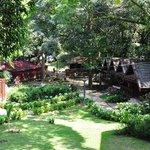 Mutiara Taman Negara - Nice isn't it ?