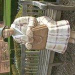 Statue in gardens