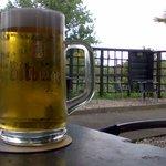 Gepflegtes Bier