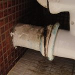 Lavatory waste pipe