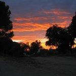 El paseo de regreso a Ardea Purpurea al anochecer