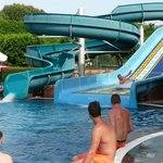 Lovely family slide