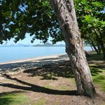 the beach , just down the road and directly across the road from dinning and shopping- great are