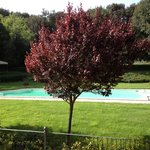 La vista della piscina dalla nostra camera