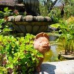 Preciosas fuentes y estanques alegran el lugar, ya de pos si precioso