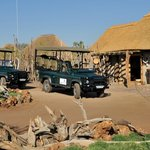 Game drive vehicles ready to go