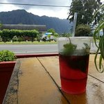 View from picnic bench at the cafe. The drink is hibiscus lemonade with fresh mint.