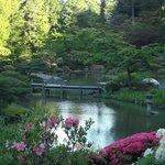 Garden Scene 1
