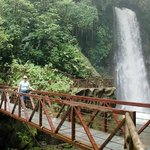 Costa Rica D Tours - Day Tours