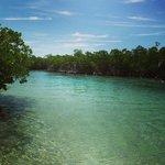 Gilligan's Island ภาพถ่าย