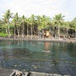 Ahalanui Park - Close to Coconut Cottage