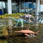 生命の海科学館の外部展示品